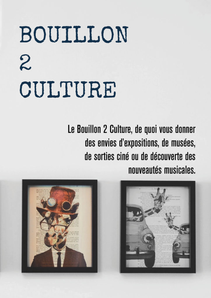 Bouillon_2_culture